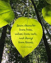 beauty break tree quotes leaf quotes nature quotes