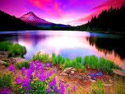 صور من الطبيعة مناظر طبيعية خلابة صباح الورد