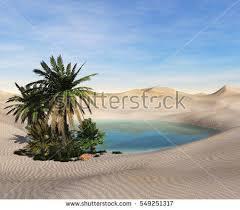 Fascinating Priscilla Marshall, Sunset in the desert   H/3260907760