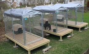 25 Best Outdoor Dog Kennel Ideas Page 2 The Paws