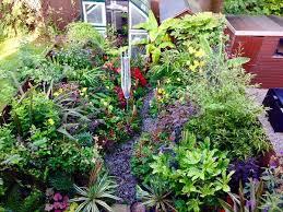 plymouth garden centre