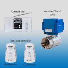 automatic shut off valve and gas