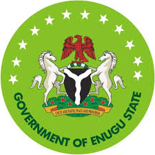 Enugu Govt. records 100% success on polio immunisation