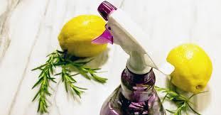 homemade bug spray natural recipes for