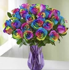 rainbow roses arranged by a florist in
