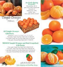 temple oranges fresh florida citrus