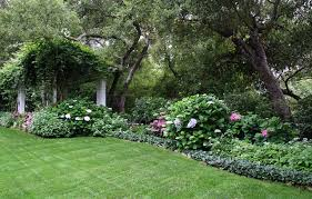 shade garden ideas zone 8 home dignity