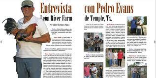 Últimos ejemplares de la edición 18,... - Revista Gallo Club | Facebook