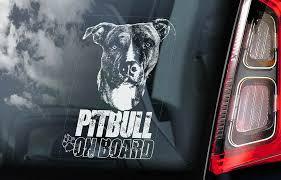 Pitbull Car Sticker Pit Bull Terrier Bully Dog Window Sign Decal Gift Pet V04 Ebay