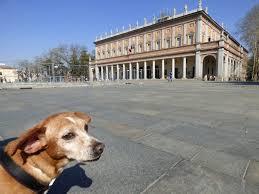 Cosa vedere a Reggio Emilia (con il cane e non solo) - Vieni via di qui