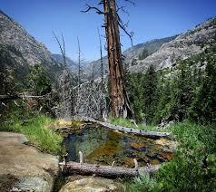 Psychedelic Spring - Iva Bell Hot Springs - Sierra | Flickr