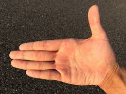 صور لـ نساء النساء رجل اصبع اليد بشرة الذكر يد كف نخلة