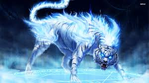 ice wolf wallpapers top free ice wolf
