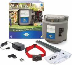 Petsafe Wireless Containment System Review Best Invisible Dog Fence For 2020