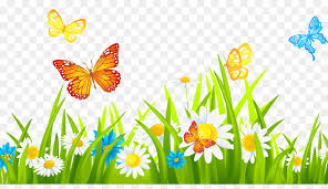 Fence Cartoon Png Download 1080 608 Free Transparent Flower Garden Png Download Cleanpng Kisspng
