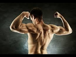 full upper body workout chest