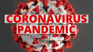 Image result for global pandemic