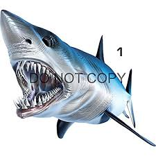 Amazon Com Mako Shark Beautiful Fish Decal For Your Boat Vehicle Etc Many Sizes And Styles Available 12 To 40 Small Position 1 Automotive