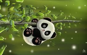 desk amol shede cute panda