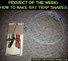 how to make rat trap snares