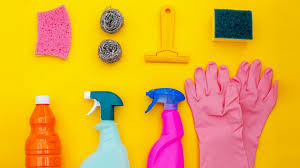 the social media stars famous for cleaning their homes the atlantic