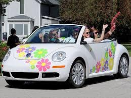 足球比分分析 Vw Beetle Flower Volkswagen Beetle Volkswagen