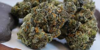 Image result for indica strains