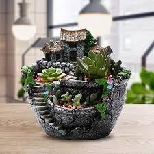 flower plants pot creative plants pots