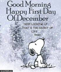pin by marie alkhouri on snoopy snoopy quotes quotes