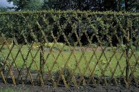 Living Fences How To Make A Living Fence For Your Garden Living Willow Fence Willow Fence Living Willow