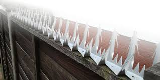Razor Fence Spikes Bird Spikes And Wall Spikes