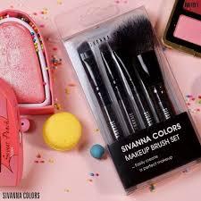 pro makeup brush set br191