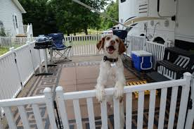 Picket Play Is A Portable Fencing System Designed To Keep Your Pets Safe While Camping Or At Home Portable Dog Fence Rv Dog Fence Dog Camping