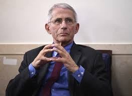 Blocked From Testifying, Fauci Plans Zoom Call with Entire Country ...