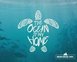 Sea Turtle Mandala Vinyl Decal Turtle Sticker Hawaii Etsy In 2020 Sea Turtle Beach Lover Gifts Vinyl Decals