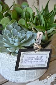 grow a succulent garden teacher s gift