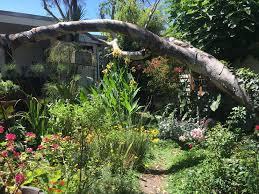 cheswick landscape design melbourne