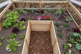 Raised Cedar Garden Bed 8 X 8 Ft Rinseffin In 2020 Cedar Garden Garden Bed Kits Vegetable Garden Raised Beds
