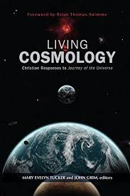Living Cosmology: Christian Responses to Journey of the Universe (Ecology  and Justice): Mary Evelyn Tucker;John Grim;, Evelyn Tucker, Mary, Grim,  John: 9781626981782: Books - Amazon.ca