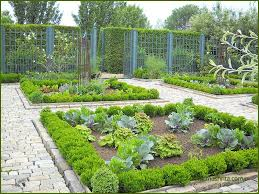 kitchen garden services delhi gurgaon noida