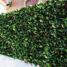 China Outdoor Artificial Boxwood Hedge Graden Fence For Landscape China Fence And Fencing Price