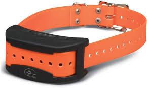 Sportdog Brand Sdf Ct Add A Dog Collar Dick S Sporting Goods