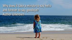 quotes for goodbyes meet again not forever