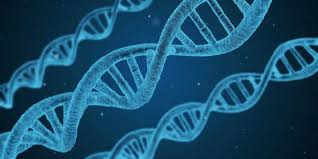 Image result for Free dna pictures for facebook