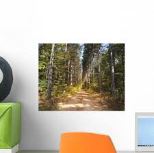 Path Through Pine Trees Wall Decal Wallmonkeys Com