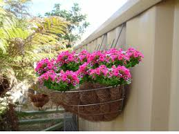 Hook A Plant Basket On Colorbond C Steel Fencing With This Simple To Install No Drill Hook Visit Http Www Biggr Backyard Inspo Garden Trellis Plant Basket