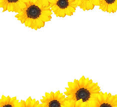 Bring In The Sunshine With Sunflower Wedding Invitations Em 2020