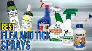 7 best flea and tick sprays 2017 you