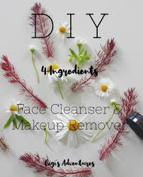face cleanser makeup remover