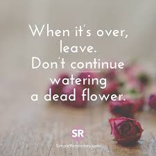 when it s over leave itypewriters leave dead flower